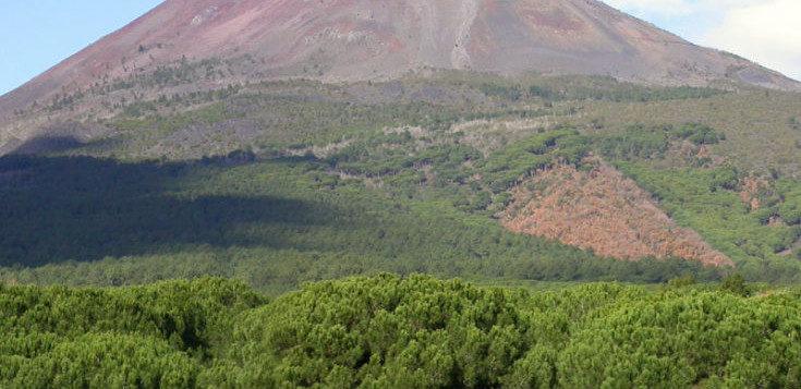 Volontari ripuliscono i boschi del Vesuvio. Appuntamento per domenica 22 settembre ai Camaldoli